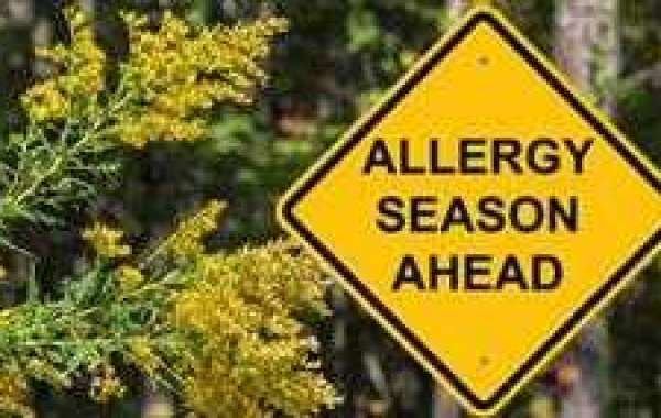 Why Seasonal Allergies Cause 'Brain Fog' - Here's What the Science Says