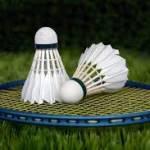 Badminton World TV Profile Picture