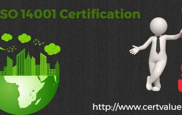 How much does 14001 implementation cost
