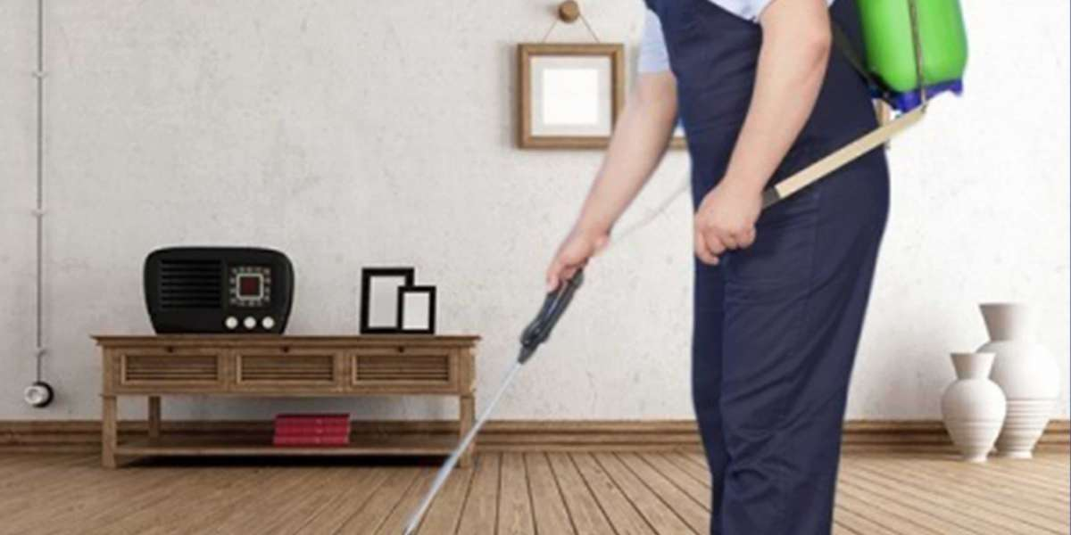 Why Pest Control Service is So Much Important?
